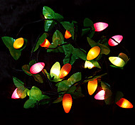 Christmas 2.5m Fruit Multi-mode Decorative Lights(220v)