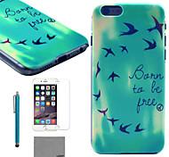 lexy® patrón de las aves de sol caja de la PC apoya difícilmente con el protector de pantalla de cristal 9h y de la aguja para el iphone 5