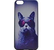 Vidros caso de telefone PC material padrão do gato para iphone 5c