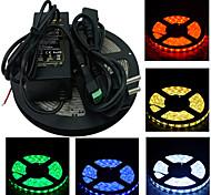 5m 300x5050 SMD luce di striscia principale e il connettore e AC110-240V a dc12v6a EU UK USA al trasformatore