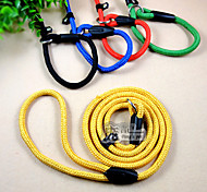 Dog Leash / Slip Lead Cosplay Red / Black / Green / Blue Nylon