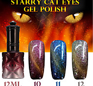 1PCS ANA Starry Cat Eyes Color Gel 12ml 12Colors Long Lasting Nail Polish 10-12