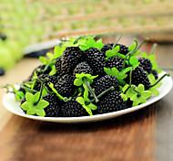 Purple Mulberry Decorative Fruit,10Pcs/set