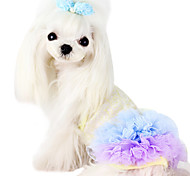 Dog Coat Blue / Pink Dog Clothes Summer Fashion