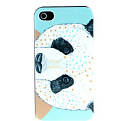 Panda Pattern Pattern Hard Case for iPhone 4/4S