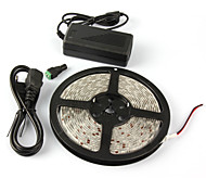4m Full spectrum LED Grow light DC12V non Waterproof LED strip lamp for greenhouse plant Hydroponics with power adapter