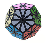 Chrysanthemum Shaped Megaminx With Stickers Puzzle Toys Magic Cube Black