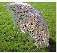 Sakura Transparent Umbrella Transparent Umbrella Shade Umbrella Straight Straight Plans