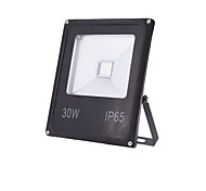 30w warme kühle weiße ip65 führte Flutlicht wasserdichten Outdoor-Wandleuchte-Projektoren (85-265V)