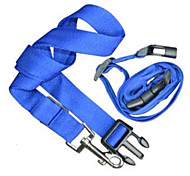 Dog Leash Running Solid Blue Nylon