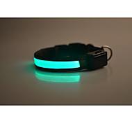 Ошейники Отражение LED подсветка Безопасность Однотонный Нейлон