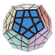 Qiji® Smooth Speed Cube Megaminx Magic Cube Black ABS