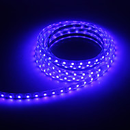 3M 30W 5050SMD 2100LM Blue Light LED Strip Light (220V)