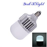 18W E26/E27 Żarówki LED kulki B 36 SMD 5630 1600 lm Zimna biel Dekoracyjna AC 220-240 V 1 sztuka