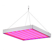 Lampy szklarniowe LED 1365 SMD 3528 5292-6300 lm Czerwony Niebieski Wodoodporne V 1 sztuka
