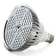 50W E27 LED-växtlampa 120 SMD 5730 4000-5000 LM Varmvit Röd Blå UV V 1 st