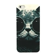 lovly Cat Glasses Pattern Hard Case for iPhone 5/5S