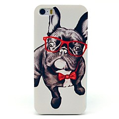 Glas Hund Tiermuster Hard Case für iPhone 5/5S