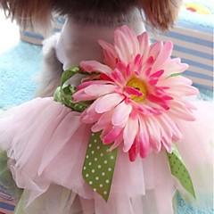 Perros Vestidos Rosado Verano Flores / Botánica
