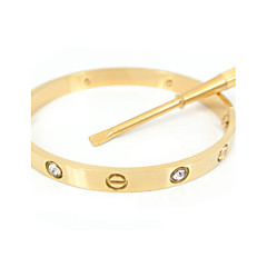 Classic 16CM Screw Titanium Steel Diamond Stone Inlay Bangle with the Same Color Screwdriver Jewelry