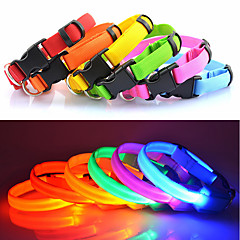 Collare LED luminoso per cane,regolabile (25-35 cm)