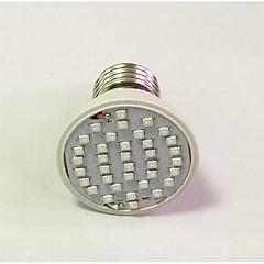 3W E26/E27 LED-kasvivalo 36 260-312 lm Punainen Sininen AC 85-265 V 1 kpl