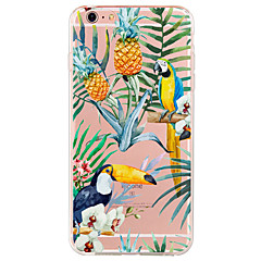 For Apple iPhone7 7 Plus 6S 6 Plus SE 5S Case Cover Bird Pattern High Penetration Painted TPU Material Phone Case