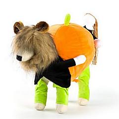 Pies Kostiumy Płaszcze Ubrania dla psów Codzienne W stylu brytyjskim Tęczowy