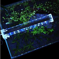 Akvaariot LED-valaistus Valkoinen Sininen Kytkimillä LED-lamppu 220V