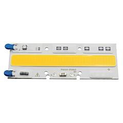 Smart ic ledd cob 50w a c220v 230v lampa ljus för diy utomhus spotlight översvämning ljus kallt / varmt vit (1 stycke)