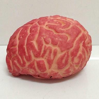Cervello Orribile Puntelli Di Halloween Decorazione Della