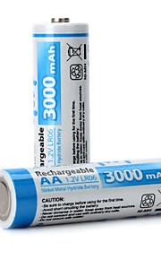 GD - Ni-MH - Aa - Batterij - 3000 - ( mAh ) - 2 - pcs
