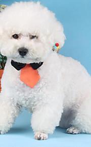 Коты / Собаки пояс Белый / Зеленый / Оранжевый Зима / Лето / Весна/осень Бант Полоски / Мода-Lovoyager