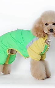 Gatos / Cães Fantasias / Capa de Chuva / Macacão Verde / Rosa Roupas para Cães Inverno / Verão / Primavera/OutonoCor Única / Riscas /