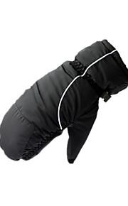Winter Gloves Women's / Men's Keep Warm / Waterproof Ski & Snowboard / Snowboarding L / XL