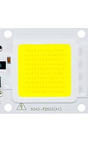 50w utral heldere led cob chip 110v 220v ingang smart ic voor diy leidde overstroming licht (1 stuk)