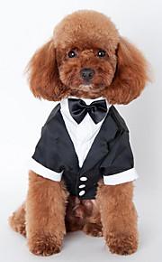 Hund Smoking Hundekleidung Hochzeit Massiv