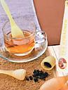 Kitchen Plastic Mesh Tadpole Shaped Tea Strainer Filter(Random Color)