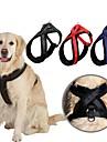 Dog Harness Adjustable/Retractable / Matt Finish Red / Black / Blue Nylon