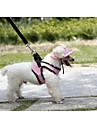 Коты / Собаки Футболка Красный / Оранжевый / Синий / Лиловый / Черный / Розовый Одежда для собак Весна/осень Праздник