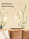 보태니컬 로맨스 정물화 패션 플로럴 풍경 판타지 벽 스티커 플레인 월스티커 데코레이티브 월 스티커,종이 자료 이동가능 홈 장식 벽 데칼