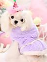 Собаки Толстовки Розовый / Лиловый Одежда для собак Зима / Весна/осень Однотонный На каждый день Other