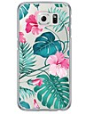 Coque Extra-Fin / Translucide Fleur TPU Doux Couverture de cas pour Samsung Galaxy S7 edge / S7 / S6 edge plus / S6 edge / S6 / S5 / S4