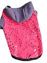 Коты Собаки Толстовки Одежда для собак Зима Весна/осень Цветовые блоки На каждый день Оранжевый Розовый Красный