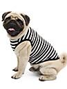 Коты Собаки Футболка Толстовка Одежда для собак Лето Весна/осень Полоски Милые Спорт Классика Праздник Мода На каждый деньОранжевый Серый