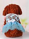 Собаки Платья Одежда для собак Милые На каждый день Спорт Кружева Синий Розовый